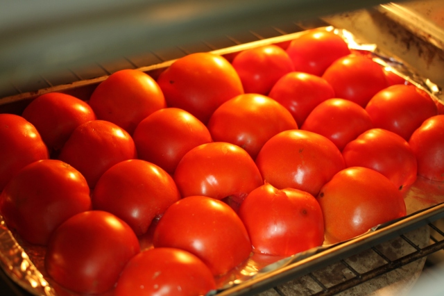 Tomatoes under the broiler.