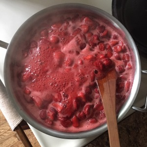 strawberry jam : hooch and home